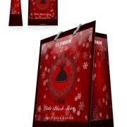科莱博年货节纸袋(活动专享)