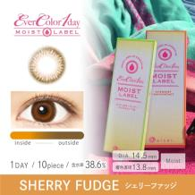 Ever Color 1 day MOIST LABEL彩色隐形亚博日抛型10片装-Sherry Fudge